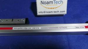 OSP-P10 Cylinder, Position Sensors Liner Drive Rodless